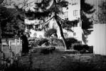 Enclave_Williamsburg_25