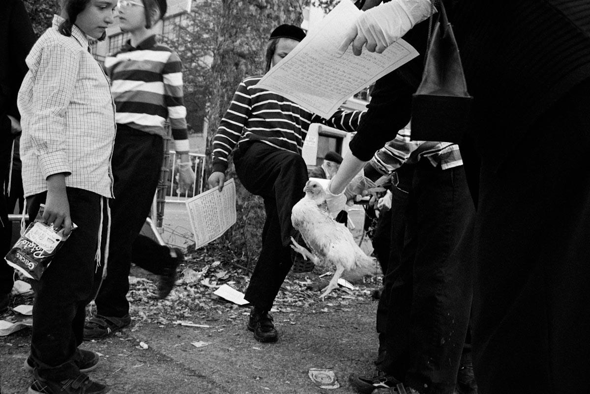 Hasidics_02