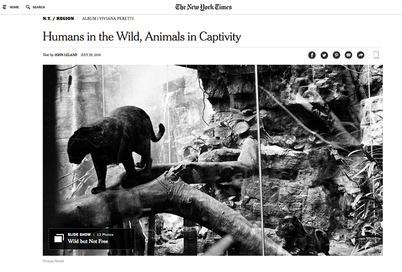 My project about Wildlife in New York featured in The New York Times.