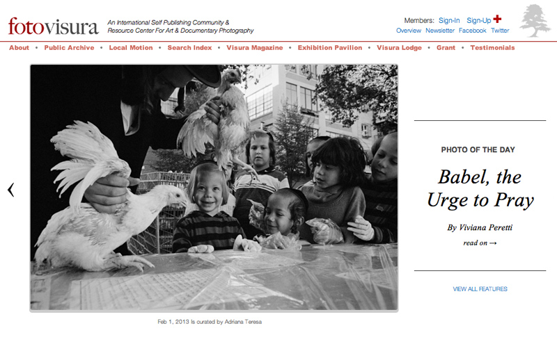 FotoVisura's PHOTO OF THE DAY, on February 1st 2013,  from my series 'Babel, the Urge to Pray' celebrating Kapparot amongst a family of Hasidic Jews in Williamsburg, Brooklyn, New York. See more at: http://www.fotovisura.com/user/peretti72/view/babel-the-urge-to-pray and http://www.vivianaperetti.com/#/babel-the-urge-to-pray/jewish-holidays/Hasidics_01