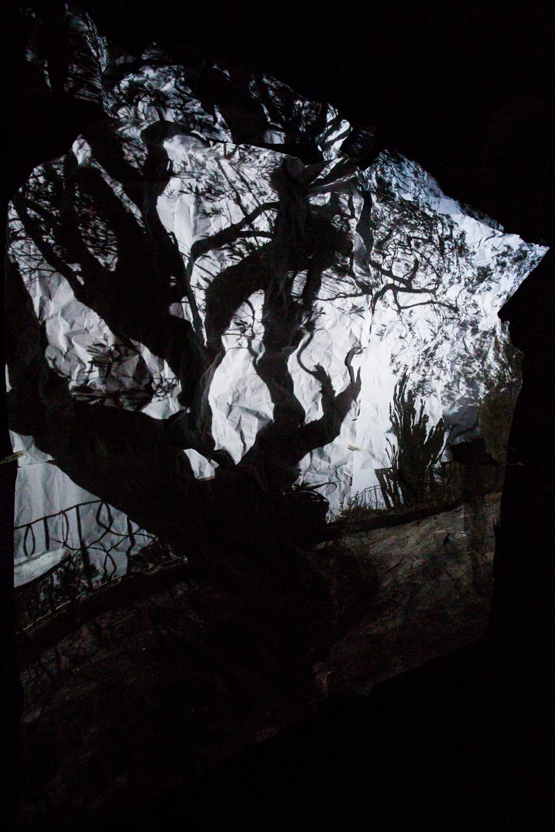 The Mediterranean and an olive tree reflected on some sheets of paper hanging down in a camera obscura I built in a summer chalet at the bottom of a garden at the Bogliasco Foundation in Italy. Bogliasco, Italy, March 2017.